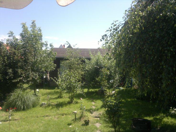 Ein Blick von der Terrasse...